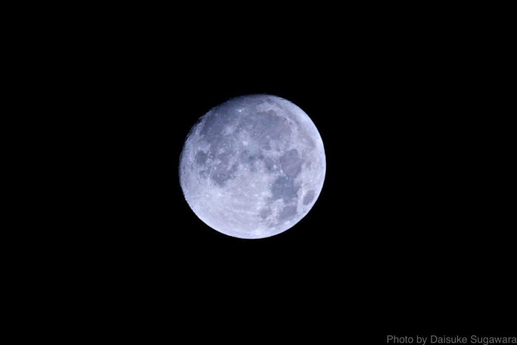 月WB蛍光灯
