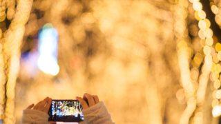 冬に撮っておきたい宮城の風景3選