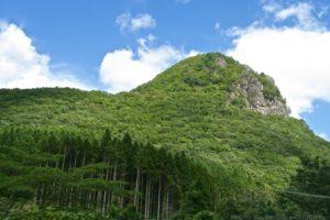 作並にあるゴリラ岩